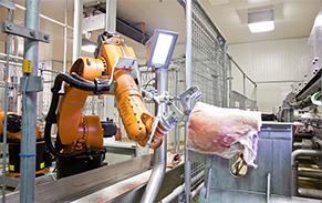 Lamb processing automation equipment